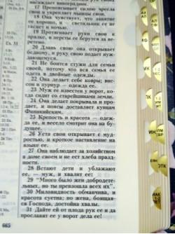Библия 11552_4