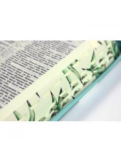 Библия 11552_2